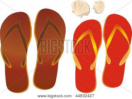 Flip Flops And Shell Isolated On A White Background