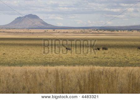 Afrikanische Landschaft mit Vulkan und Elefanten