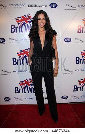 LOS ANGELES - APR 23:  Terri Seymour arrives at the 7th Annual BritWeek Festival