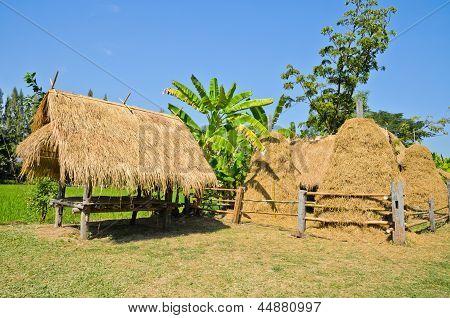 Native Thai Summerhouse