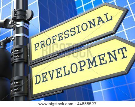 Business Concept. Professional Development Sign.