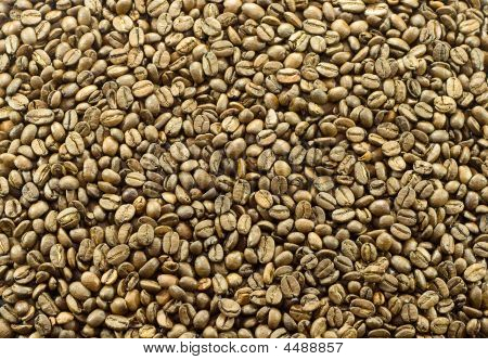 Coffee Beens