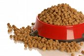 bowl of dog kibble overflowing in dog dish isolated on white background poster