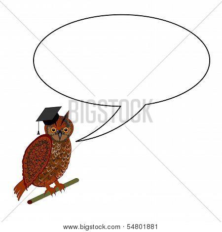 An Owl Wearing A Graduation Cap With A Speech Bubble