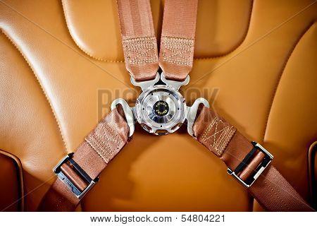 Seatbelt in the private plane