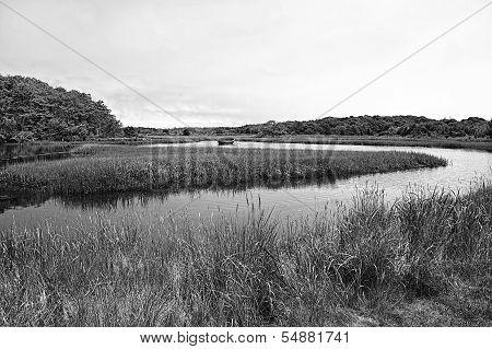 Rowboat in Marsh