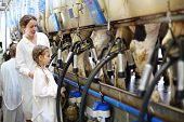 Mother and little daughter in white coats look at milking of cows in farm. poster