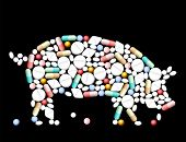 Tablets, pills and capsules, that shape a pig. poster
