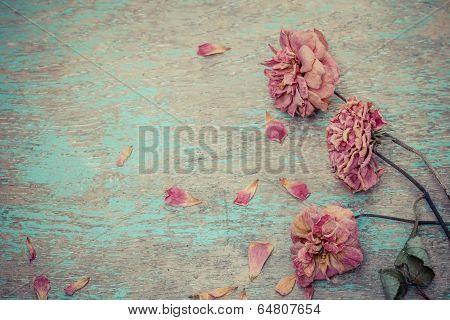 Dried Rose On Old Vintage Wood Plates