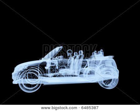 Xray Skeleton Driving A Car