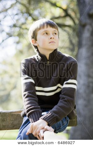 Young Boy In Park