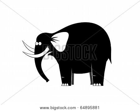 Surprised Elephant