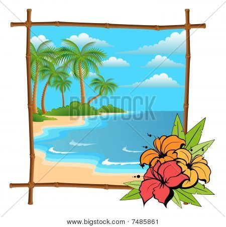 palm tree in bamboo frame