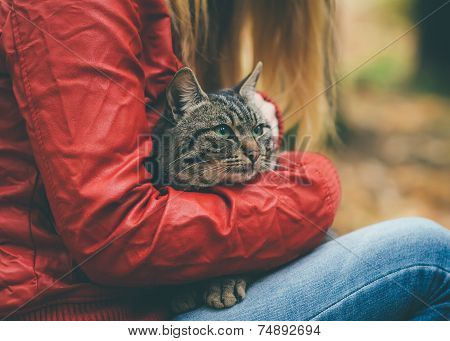 Gray Cat homeless and Woman hugging Outdoor Lifestyle and Friendship helping concept poster