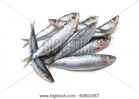 Fresh raw sardines isolated  on white background