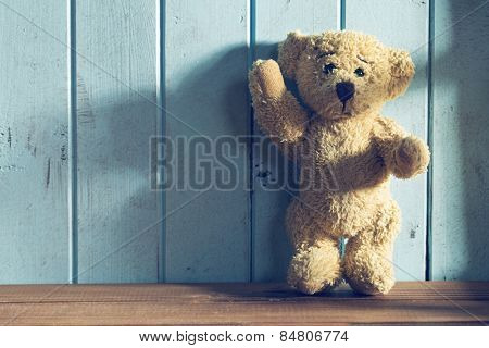 the teddy bear stands in front of a blue wall