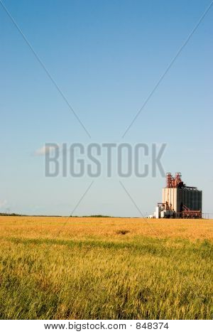 Field and elevator