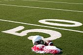 American football helmet and pom poms on field next to 50 yard line. poster