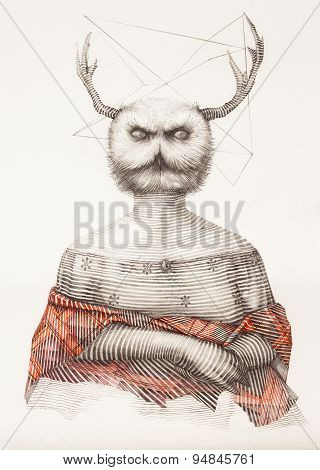 Surreal Hand Drawing Of A Lady Owl, Decorative Artwork