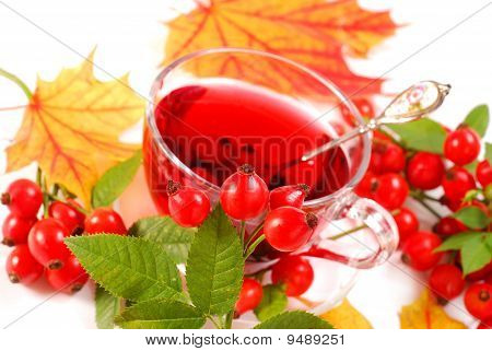 Glass Of Rose Hip Tea