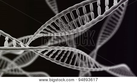 Many Dna Chains On The Black Background