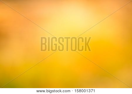 abstract blurred backgrounds, gradient yellow background for desigh