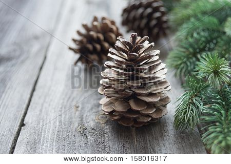 Christmas concept: pine cones and spruce branches on the background of old unpainted wooden boards
