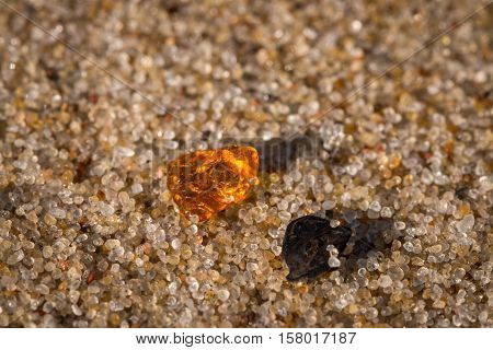 Amber on the sand grains next to the black rock