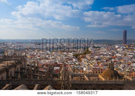 Aerial view from the top of Seville Cathedral Spain. Seville Cathedral is the largest Gothic cathedral and the third-largest church in the world.