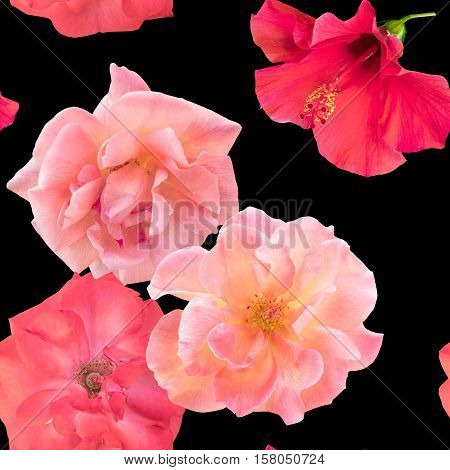 A seamless background pattern with photos of tender pink and red rose and hibiscus flowers on black