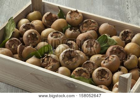 Fresh picked medlars in a wooden chest