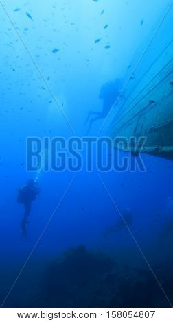 Scuba Diving. Sunken Ship
