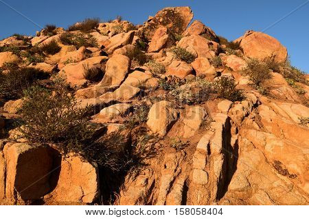 Rocky arid landscape with drought tolerant chaparral plants taken near Riverside, CA