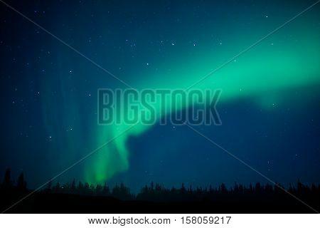 Aurora borealis above Denali Np, Alaska, USA 1