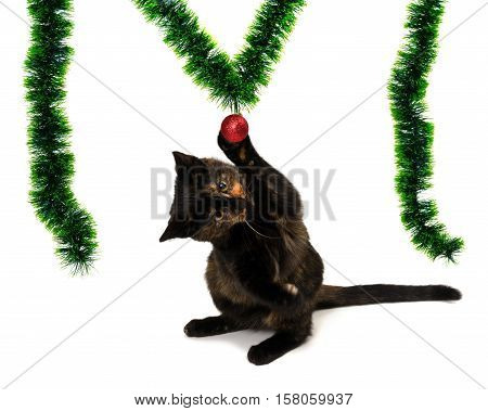 Kitten Sitting On Its Hind Legs And Playing With A Red Christmas-tree Ball