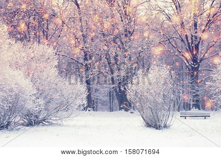 Bright xmas background. Christmas snowfall in snowy park. Color snowflakes on white trees background.