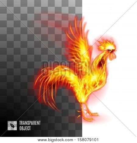 Fiery Golden Cockerel On Transparent Background Symbol Chinese New Two Thousand Seventeen