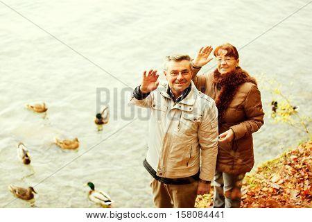 Happy senior couple feeding ducks on Thun's Lake Switzerland.