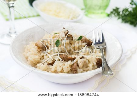 Risotto with mushrooms ceps boletus served with cheese