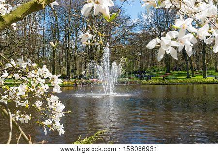fountain in keukenhof tulip gardens in lisse netherlands
