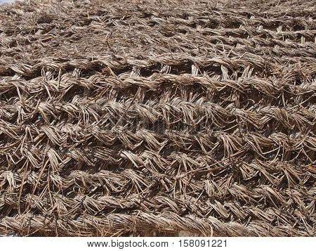 Wattled fence from dry palm branches for detention of sandstorms in the desert