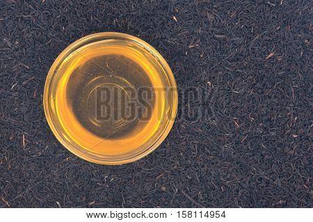 Organic amish farm pure honey in bowl and camellia assam tea