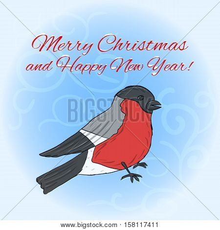 New Year and Christmas greeting card with hand drawn bullfinch against light blue background, eps10 vector illustration