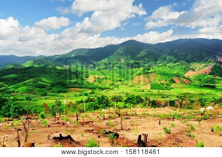 Scenic View Of Amazing Mountains And Bright Green Rice Fields