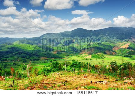 Amazing View Of Bright Green Rice Fields Surrounded By Mountains