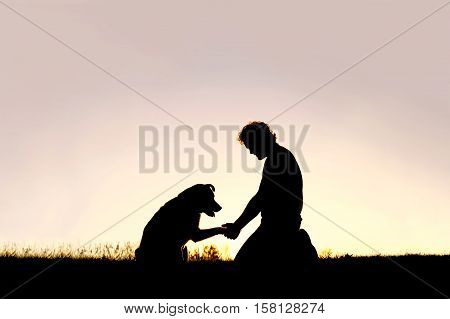 A young man is sitting outside training his pet dog and shaking hands on a summer evening silhouetted by the sunset in the sky.