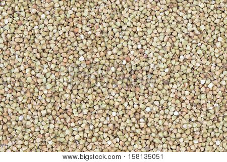 Dry raw buckwheat seeds filled in as background
