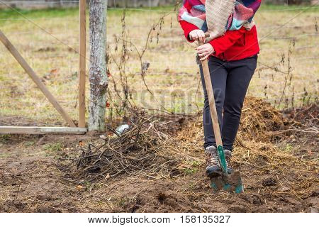 Woman Digging With Spade In Garden