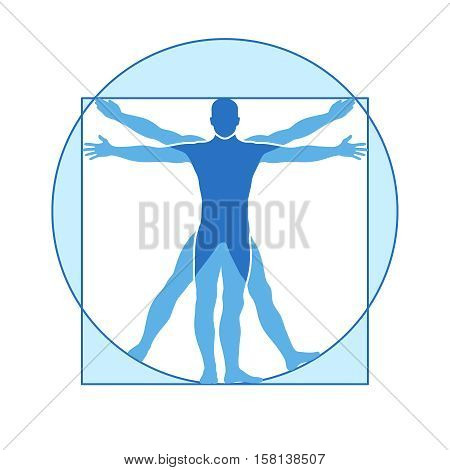 Human body vector icon similar vitruvian man. Like Leonardo da Vinci image vitruvian man, classic proportion form man illustration