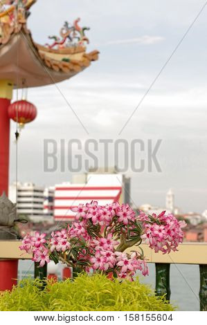 GEORGETOWN MALAYSIA - JANUARY 18 2016: closeup view of Hean Boo Thean Kuanyin Chinese Buddhist temple in Clan Jetties. Built on stilts over the harbor of George Town